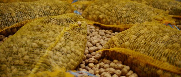 séchage des noix AOC du Périgord - © Lucien Fort